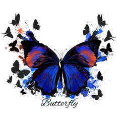 Detailed butterfly in detailed style vector