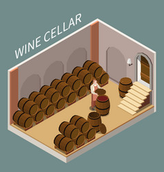 Wine cellar isometric vector