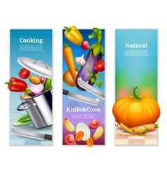 Natural Vegetables Vertical Banners vector image