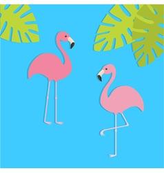 Two pink flamingo set Exotic tropical bird Zoo vector image vector image