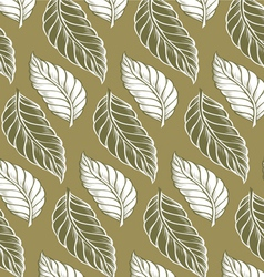 cacao leaves background pattern vector image