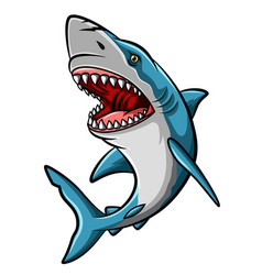 cartoon angry shark mascot on white background vector image