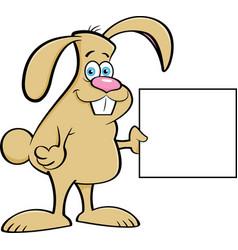 Cartoon rabbit holding a sign vector