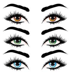 eyes with long eyelashes vector image