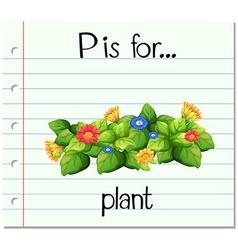 Flashcard alphabet P is flor plant vector