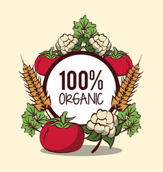 fresh organic vegetables vector image