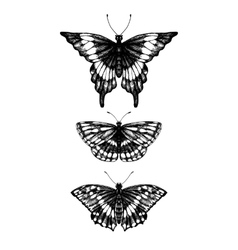 hand drawn set of butterflies vector image