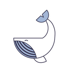 humpback whale isolated icon vector image
