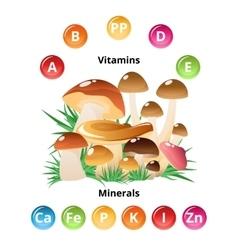 Mushroom nutritions infographics vector