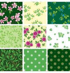 set of various seamless floral pattern vector image