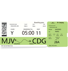 template of a boarding pass ticket vector image