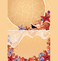 Two backgrounds with seashells on the beach vector