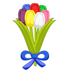 beautiful bouquet of seven multicolored tulips fla vector image