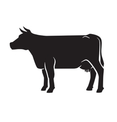 black cow icon vector image