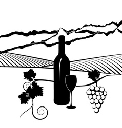 California vineyard vector image