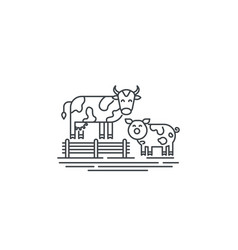 Farm cows line icon outline of two vector