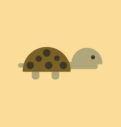 Flat icon on background turtle vector