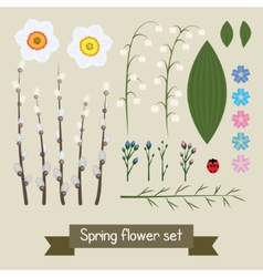 Floral decor set flowers and leaves vector image