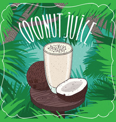fresh coconut juice in glass with nut or fruit vector image