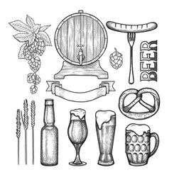 graphic beer collection vector image