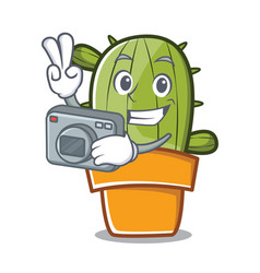 photography cute cactus character cartoon vector image