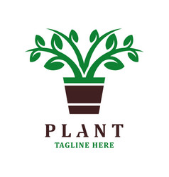 plant logo design template vector image