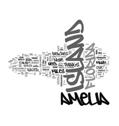 amelia island condo rentals text word cloud vector image