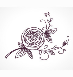 rose flower decorative floral design element vector image