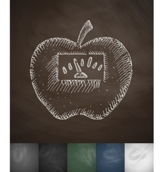 scales apple icon Hand drawn vector image vector image