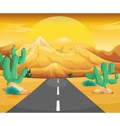 Scene with road in the desert vector image vector image