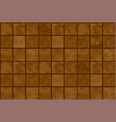 terracotta floor tiles vector image