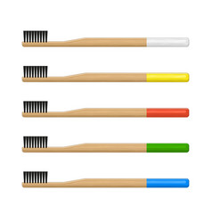 Bamboo toothbrush set on white background vector