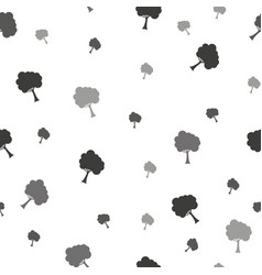 birch treeseamless patternfabricdesign vector image