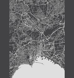 City map naples monochrome detailed plan vector