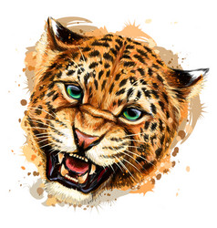 Growling leopard color hand-drawn portrait vector