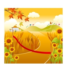 sunflower field and sun vector image