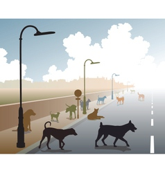 Dog road vector image