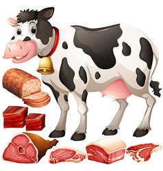 Cow and meat products vector image