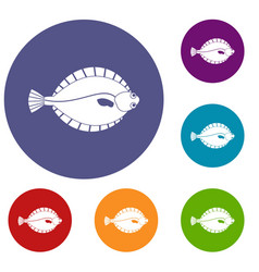 Flounder icons set vector