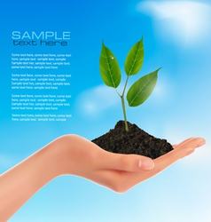 young plant in hand vector image vector image
