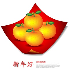 Chinese New Year Mandarin oranges on red cloth vector image vector image