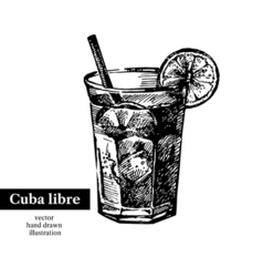 Hand drawn sketch cocktail cuba libre vintage vector image