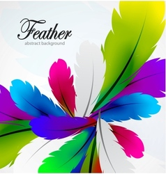 colorful feather background vector image