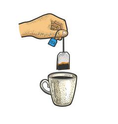 Hand brews tea bag sketch vector