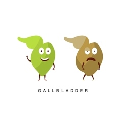 Healthy vs Unhealthy Gallbladder Infographic vector