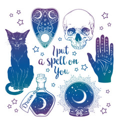 set of magic witchcraft objects vector image
