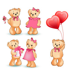 teddy bear collection of objects vector image vector image