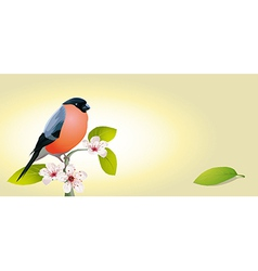 vintage card with bird vector image vector image