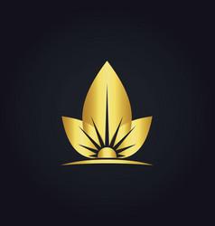 eco leaf sun organic gold logo vector image vector image