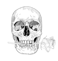 Vintage Greeting Card with Hand Drawn Skull and vector image